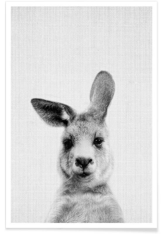 Noir & blanc, Bébé Kangourou - Photo en noir et blanc affiche