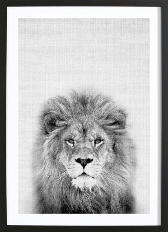 Lion Poster i träram