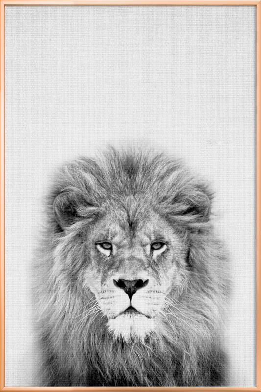 Lion poster in aluminium lijst