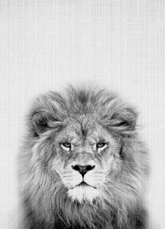 Lion -Leinwandbild