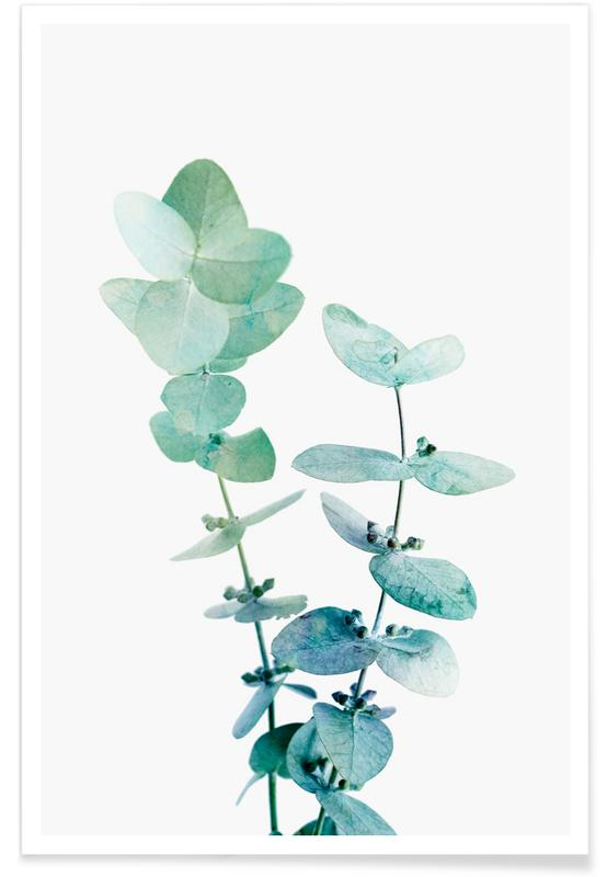Blade & planter, Print 18 Plakat