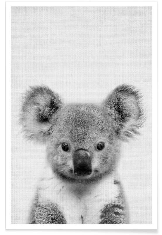 Koala - Photo en noir et blanc affiche