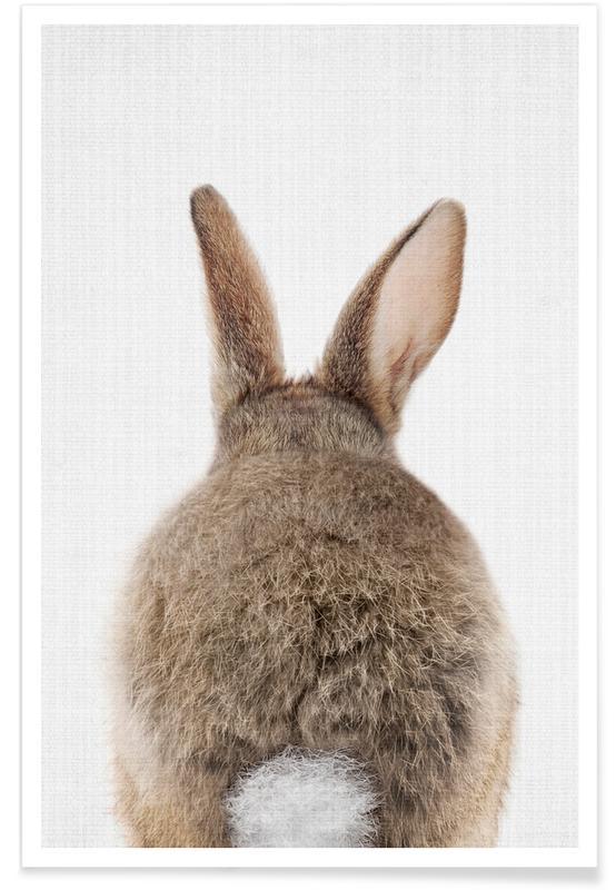 Rabbit Tail Colour Photograph Plakat