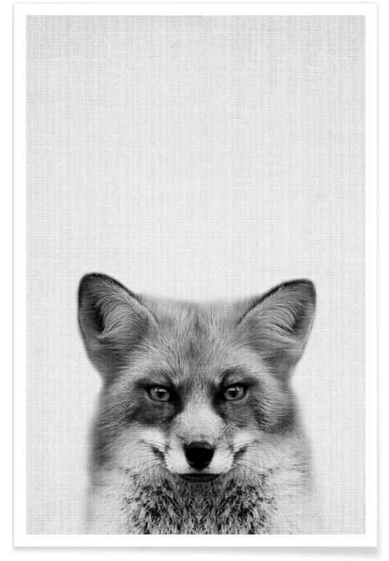 Art pour enfants, Renards, Noir & blanc, Renard - Photo en noir et blanc affiche