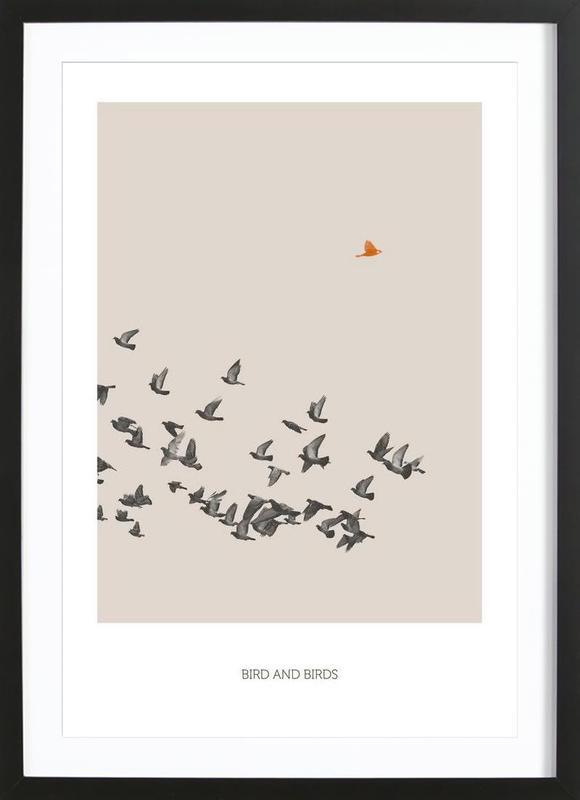 Bird And Birds -Bild mit Holzrahmen