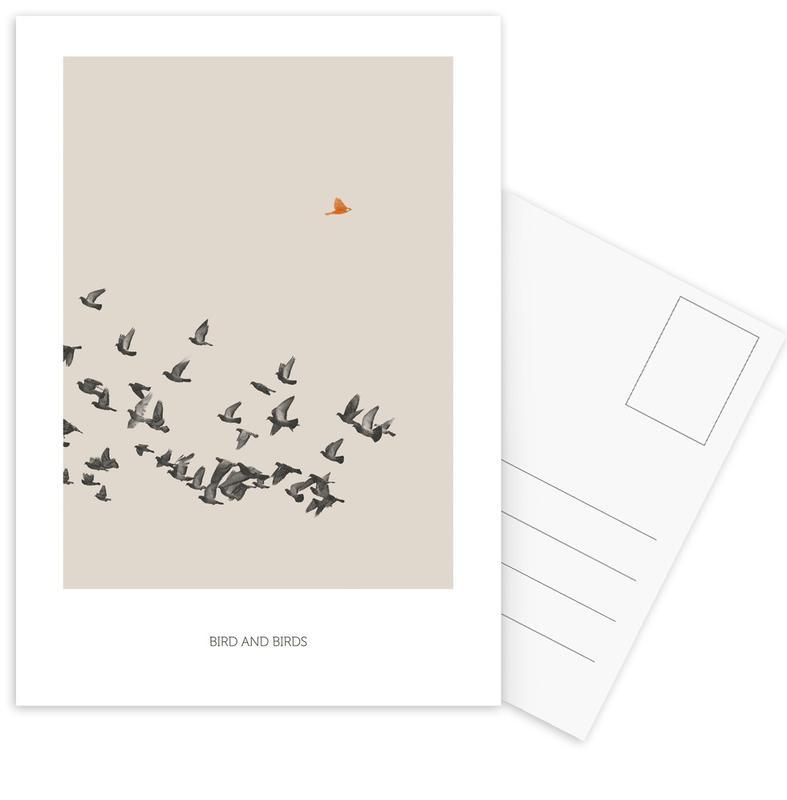 Bird And Birds Postcard Set