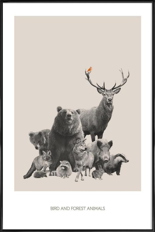 Bird And Forest Animals Framed Poster
