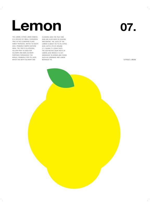 Lemon -Leinwandbild