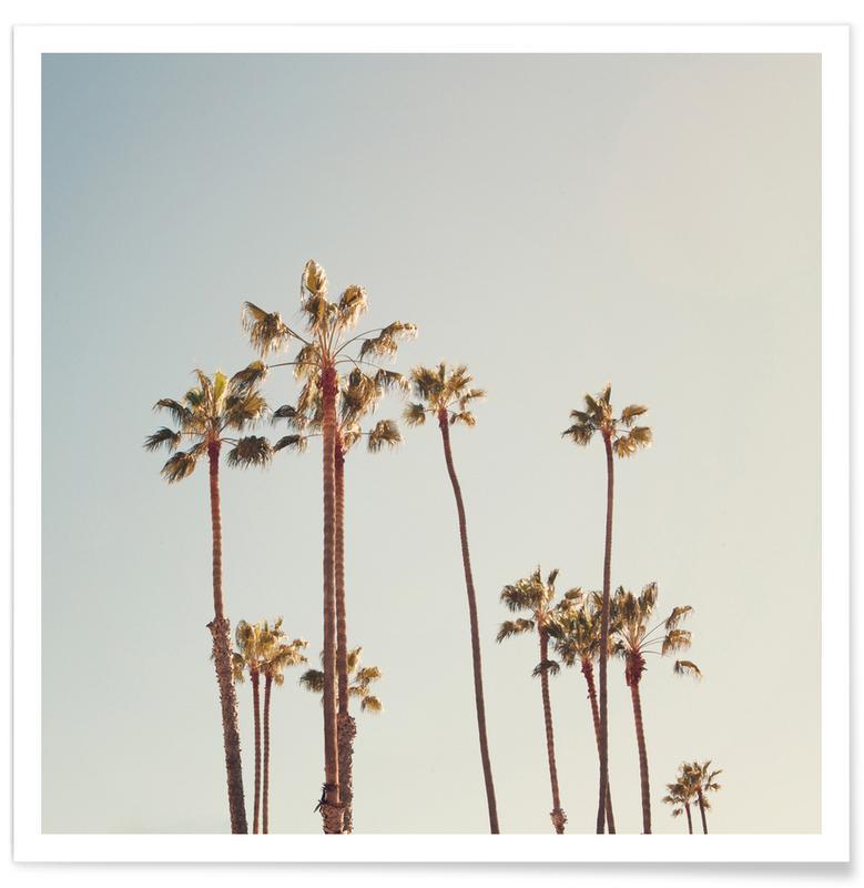 Palmen-Fotografie -Poster