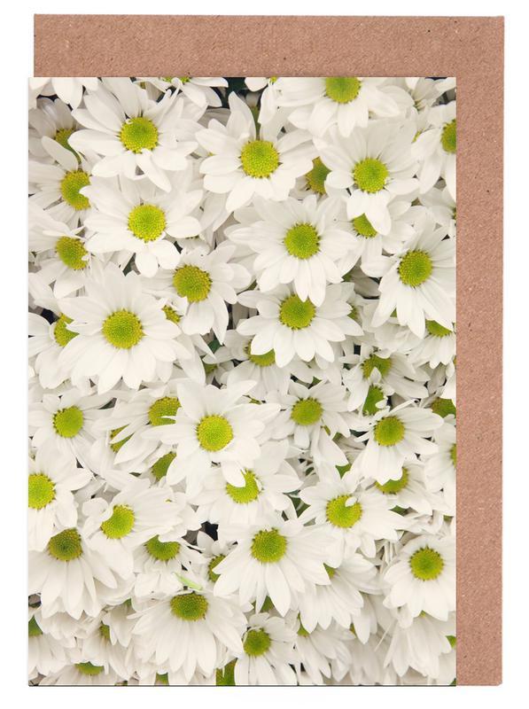 Daisies, Daisy Greeting Card Set
