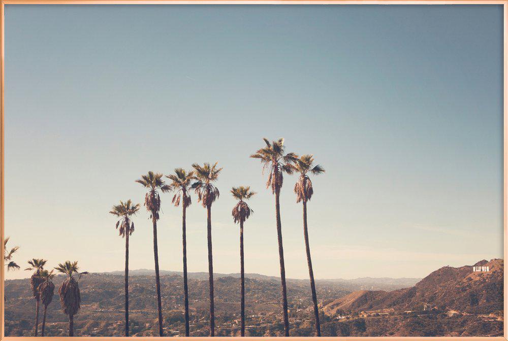 Hollywood Hills -Poster im Alurahmen