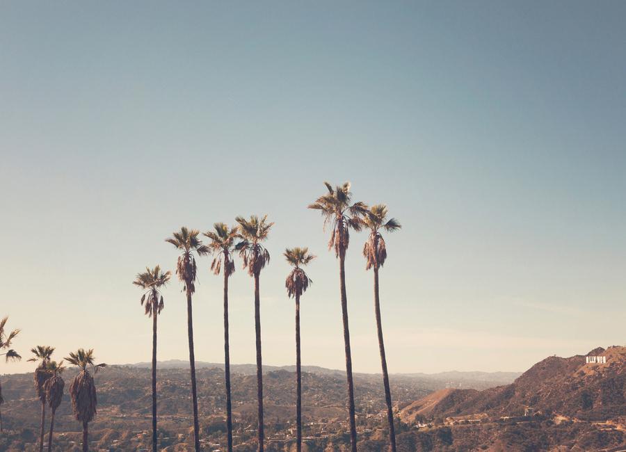 Hollywood Hills -Leinwandbild
