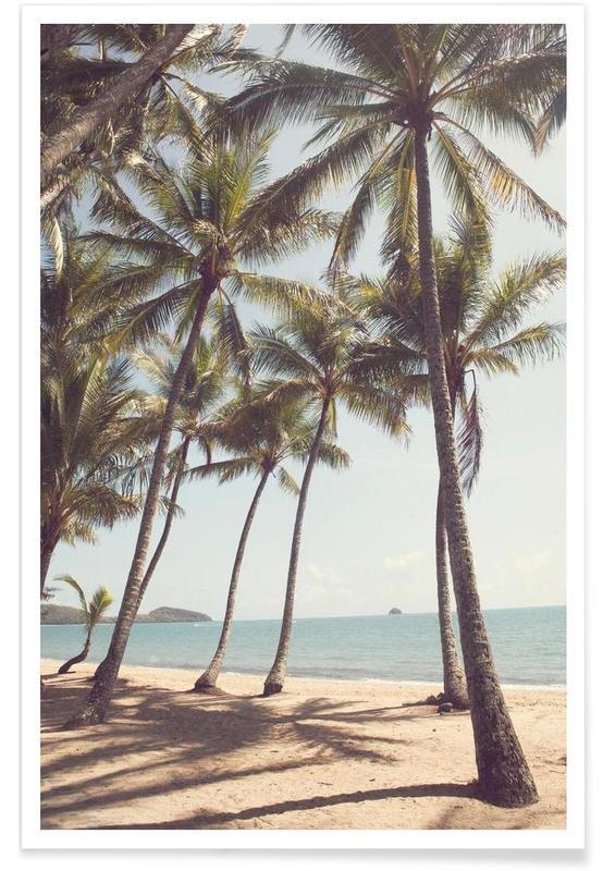Plages, Palmiers, Palm Cove - Photographie affiche
