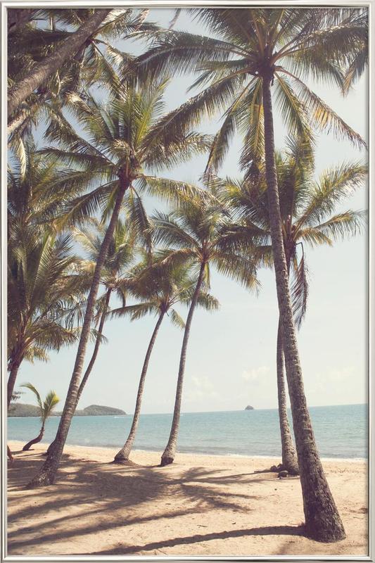 Palm Cove poster in aluminium lijst