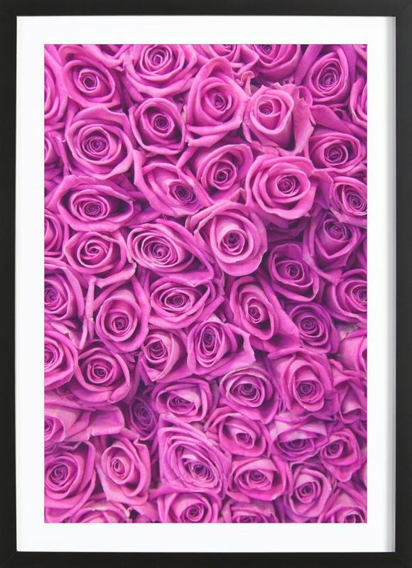 Purple Roses -Bild mit Holzrahmen