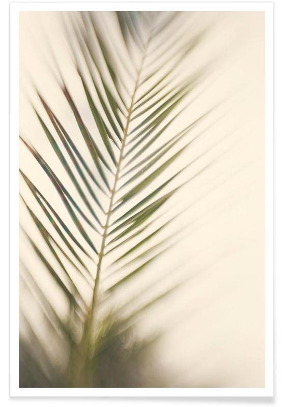 Palmen, Schatten-Fotografie -Poster