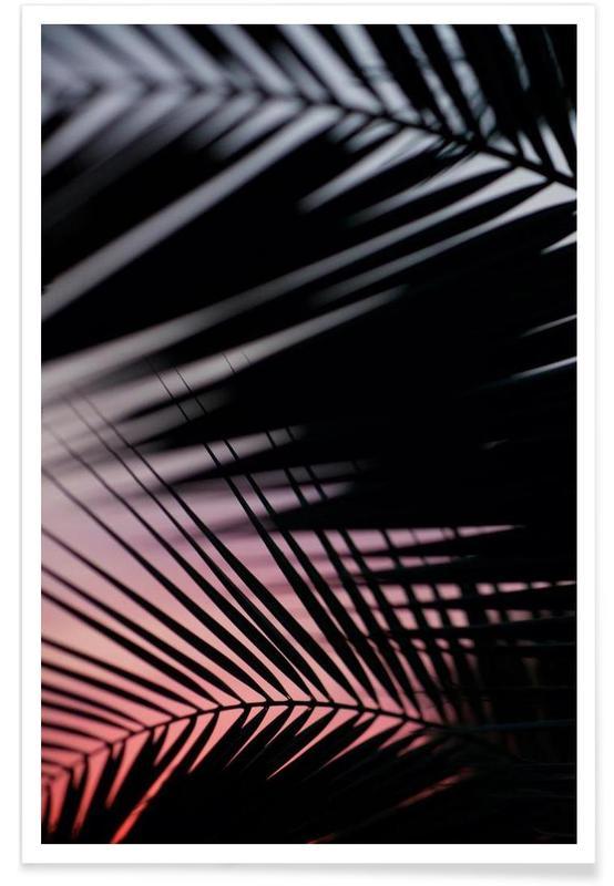 Palmen, Palms 3 -Poster
