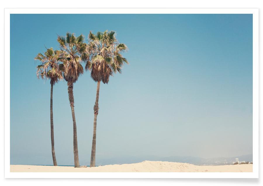 Plages, Los Angeles, Venise, Palmiers, Palmiers de Venise Beach - Photographie affiche