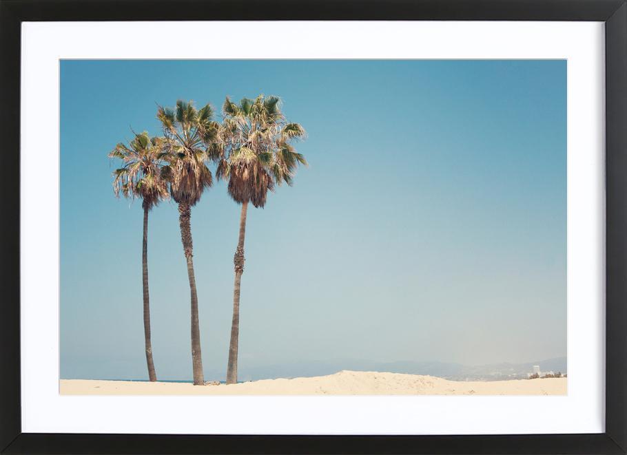 Venice Beach Palms -Bild mit Holzrahmen