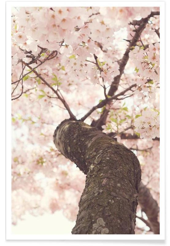 Heiligtum-Fotografie -Poster