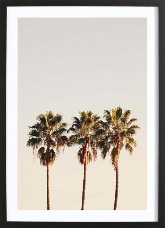 3 Palms -Bild mit Holzrahmen