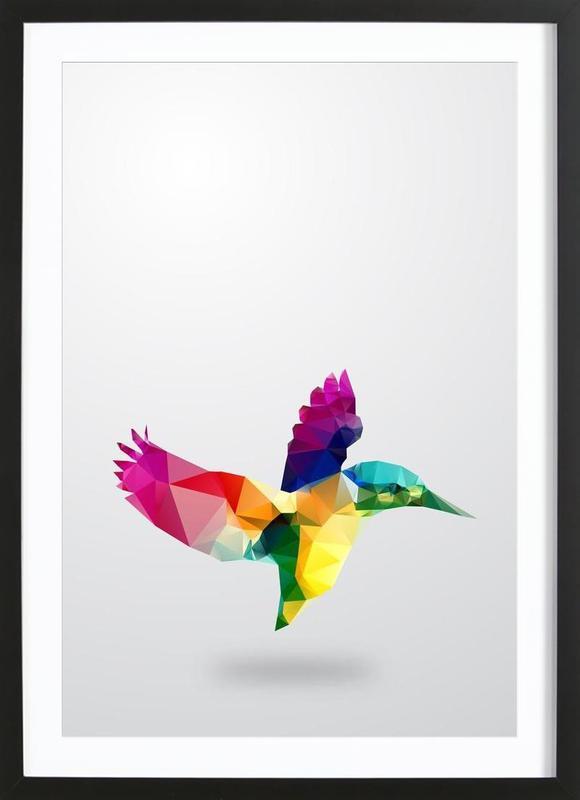 Glass Animals - Bird ingelijste print