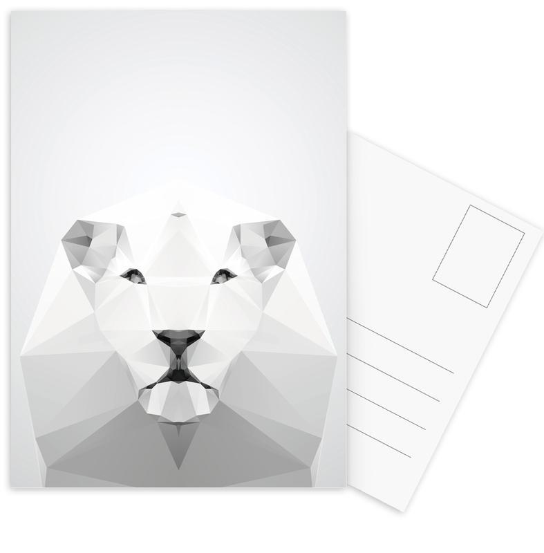 Geo White Lion Postcard Set