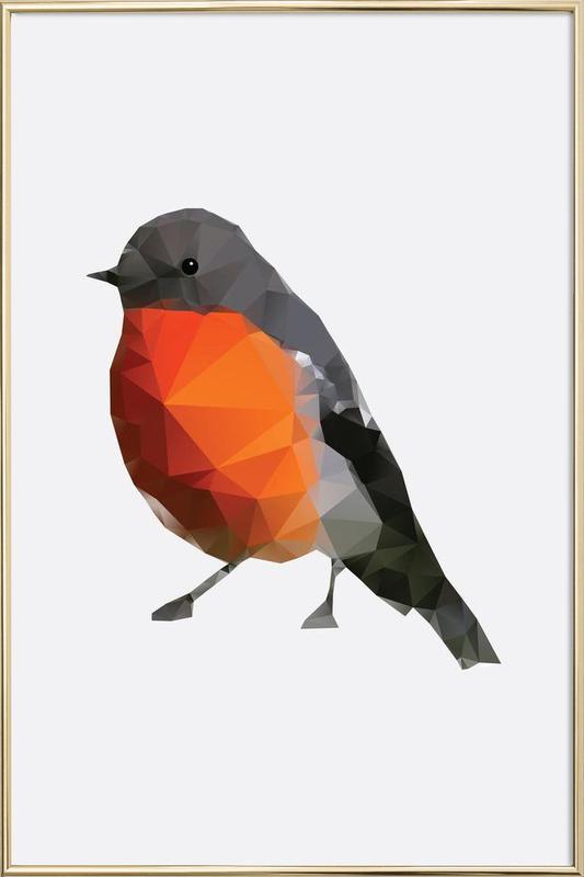 Geo Robin affiche sous cadre en aluminium