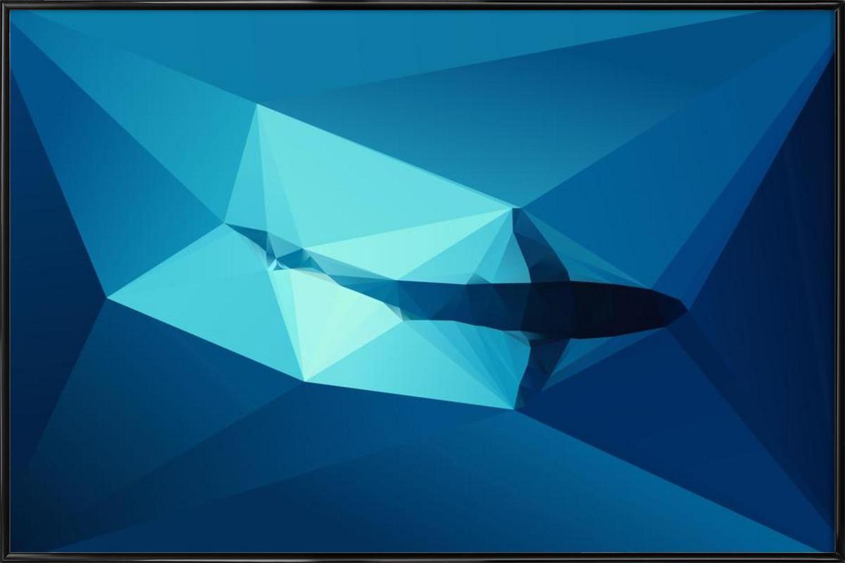 Shark 2 Framed Poster