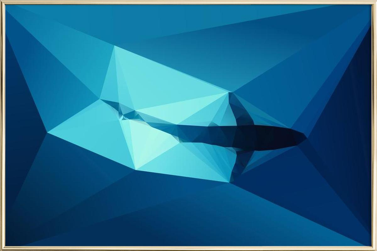 Shark 2 Poster in Aluminium Frame