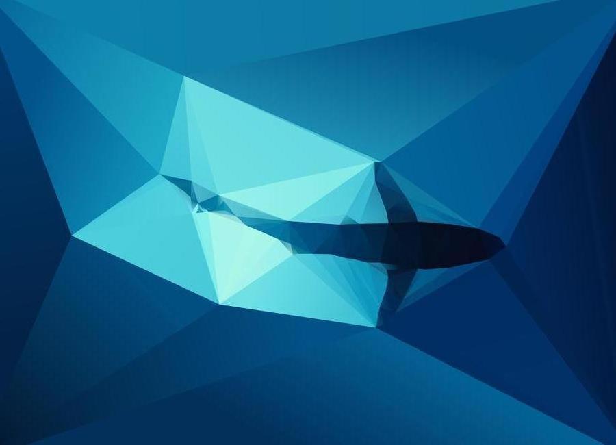 Shark 2 Canvas Print