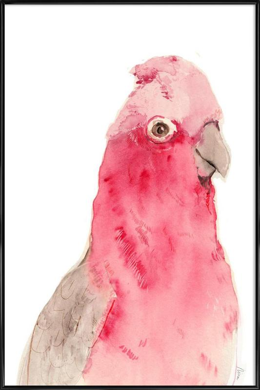 Pink Parrot -Bild mit Kunststoffrahmen