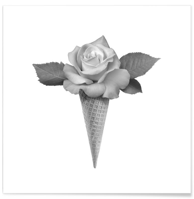 Rosen, Schwarz & Weiß, Eiscreme, Rose Cream -Poster