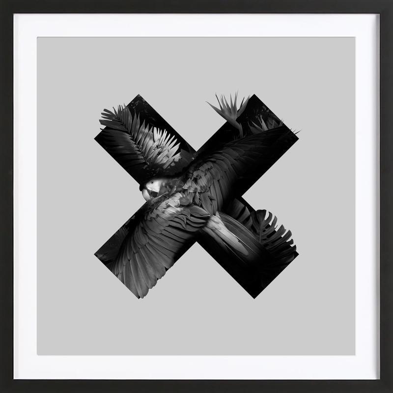 Xotic Framed Print