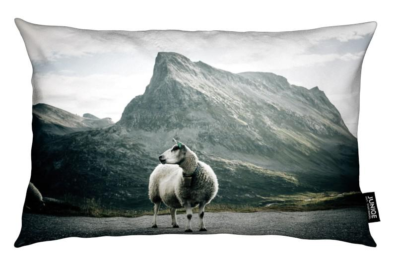 Moutons, Sheep 1 coussin