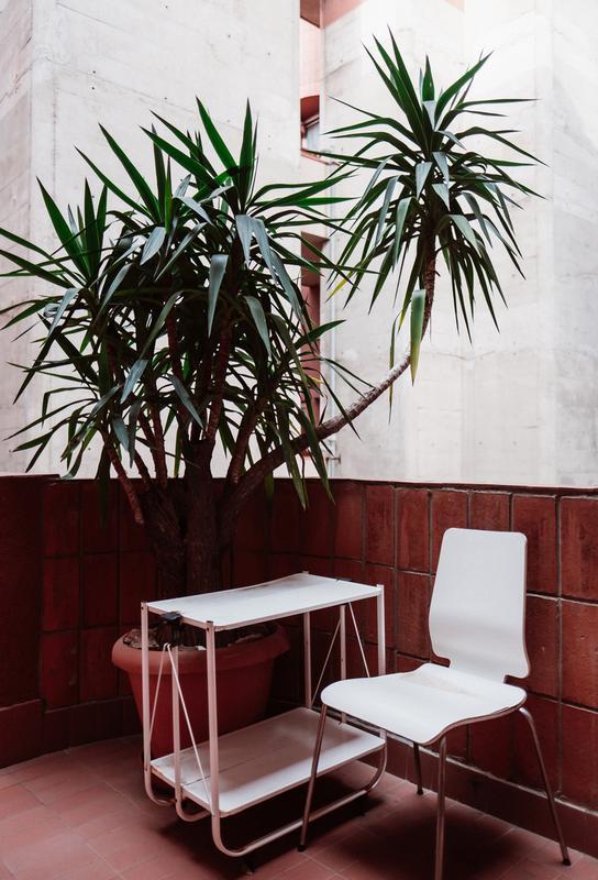 Walden Chair acrylglas print