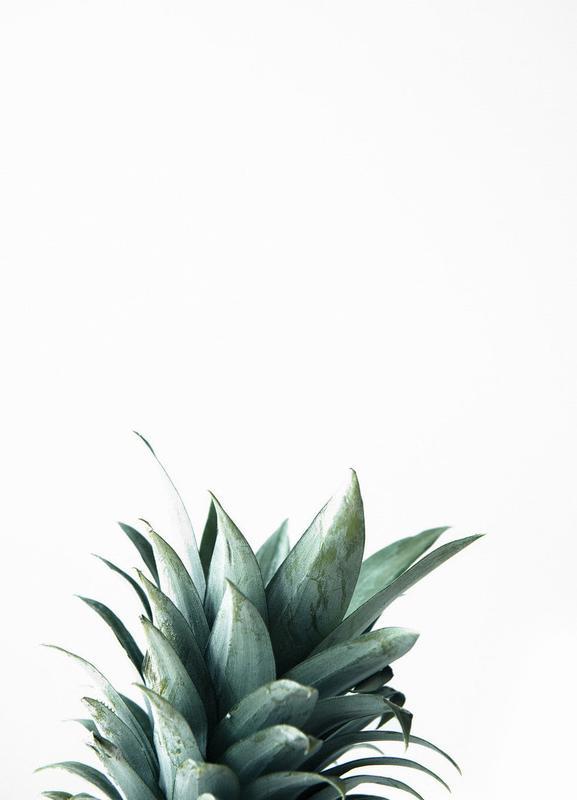 Pineapple canvas doek