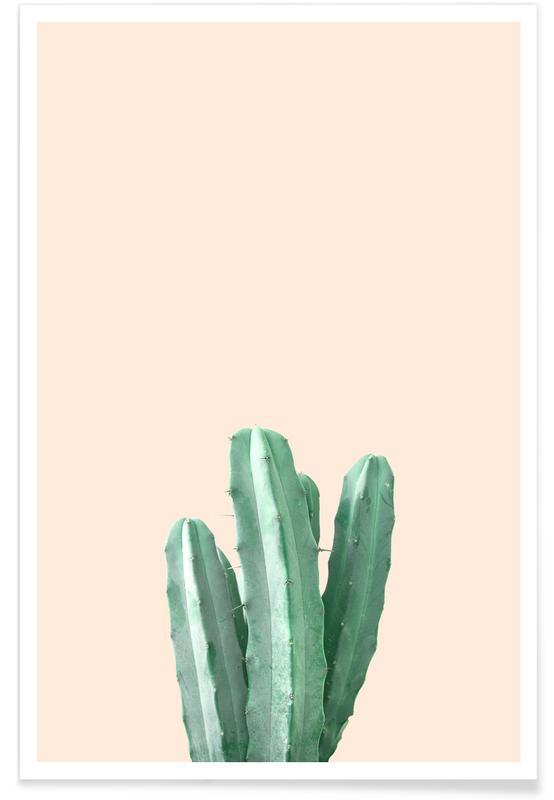 Pink Cactus -Poster