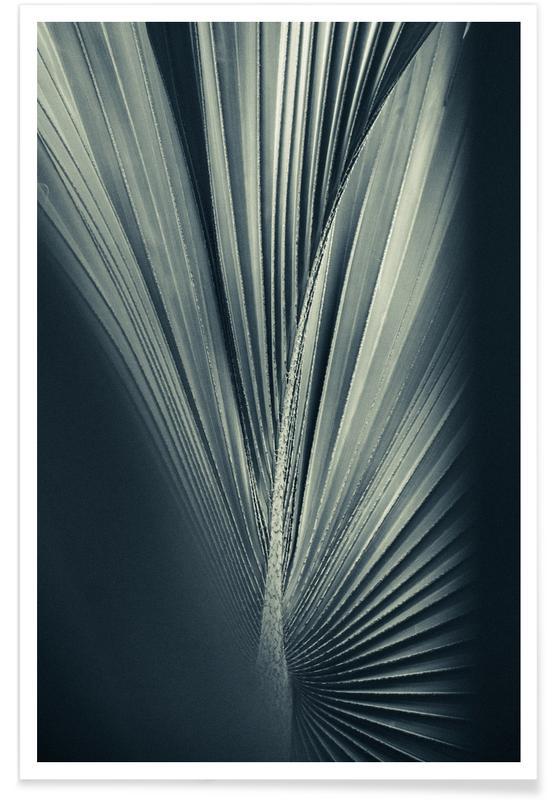 Palms-1846 poster
