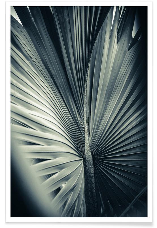 Blade & planter, Palmer, Palms-1847 Plakat