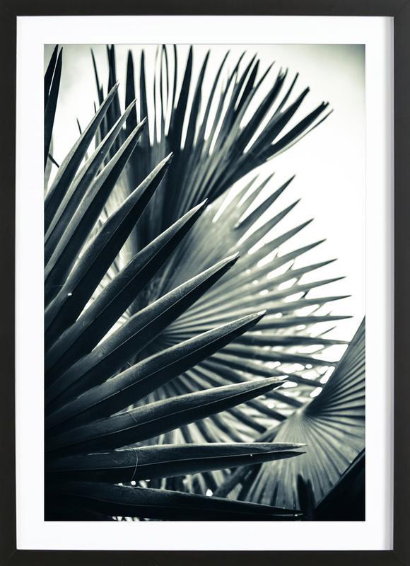 Palm Shade 2 Poster i träram