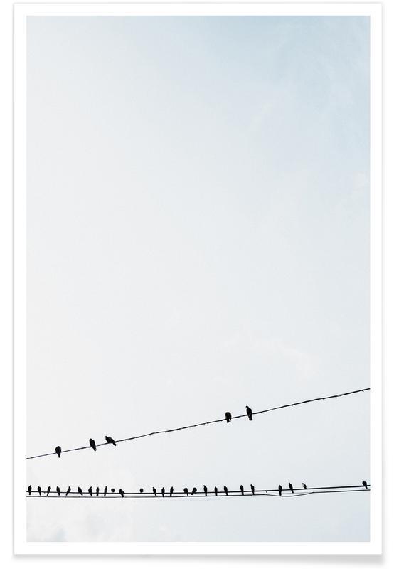 Ciels & nuages, Birds affiche