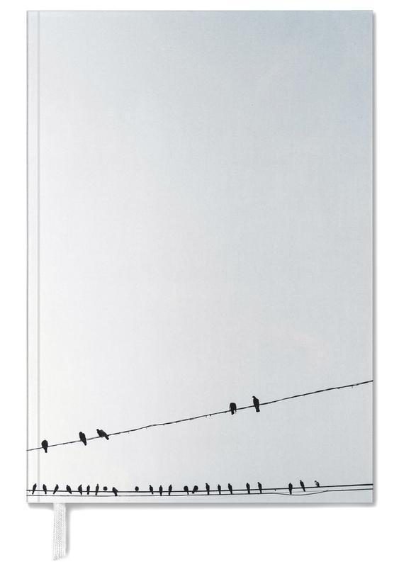 Birds -Terminplaner
