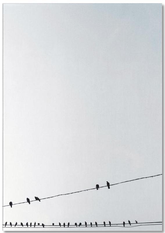 Birds -Notizblock