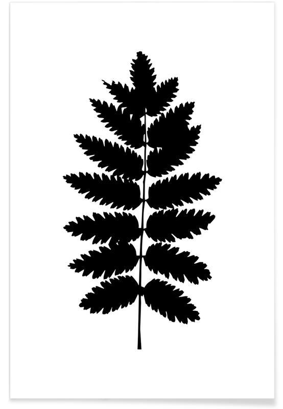 Schwarz & Weiß, Blätter & Pflanzen, Leaf Specimen Fern -Poster
