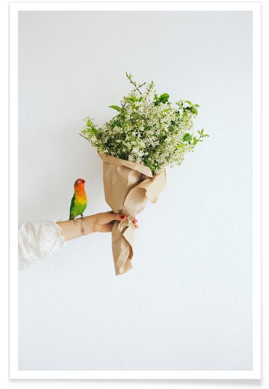 Papegaaien, Felicitaties, Verjaardagen, Parrot And A Girl poster