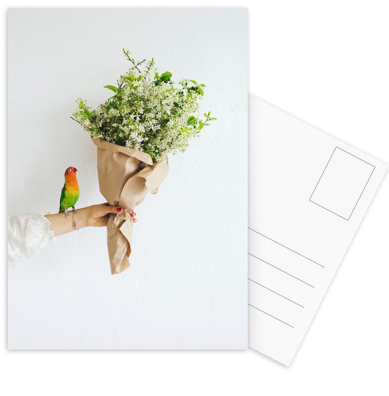Parrot And A Girl Postcard Set