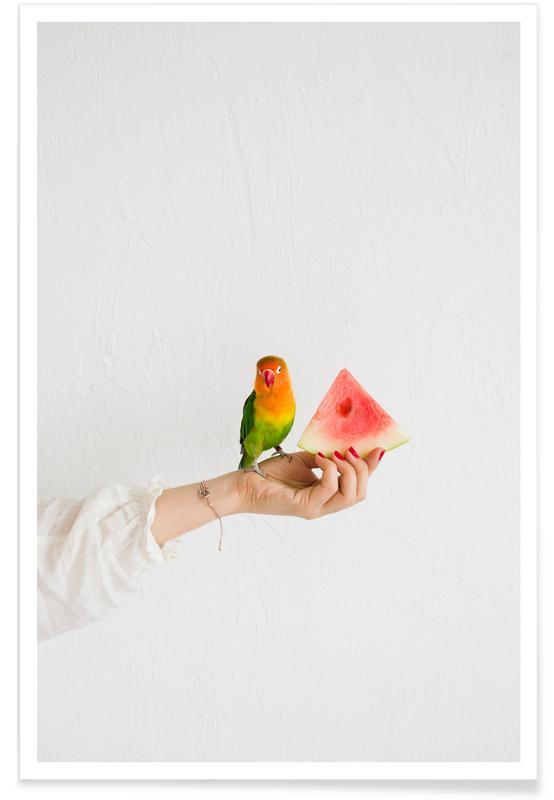 Pastèques, Perroquets, Watermelon And Parrot affiche