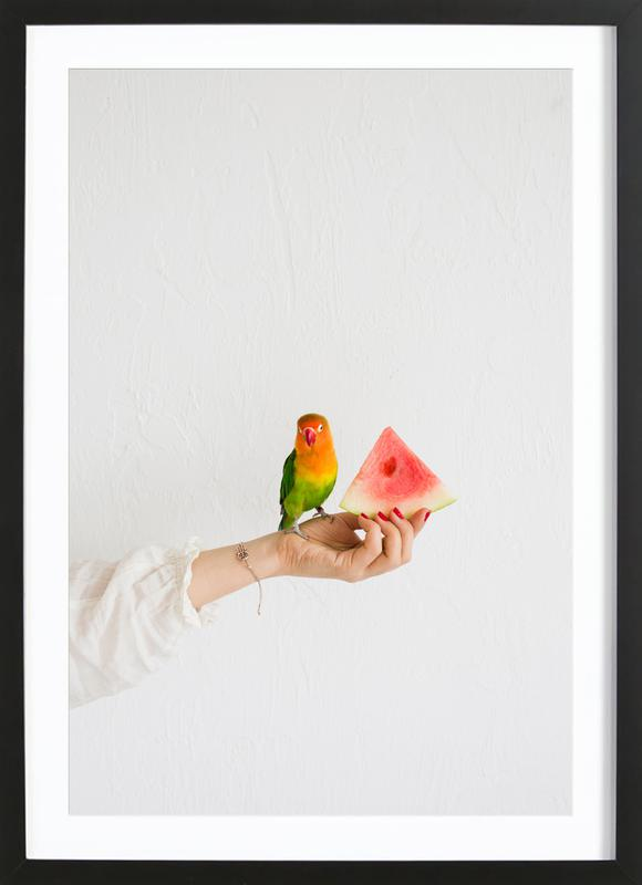 Watermelon And Parrot Framed Print