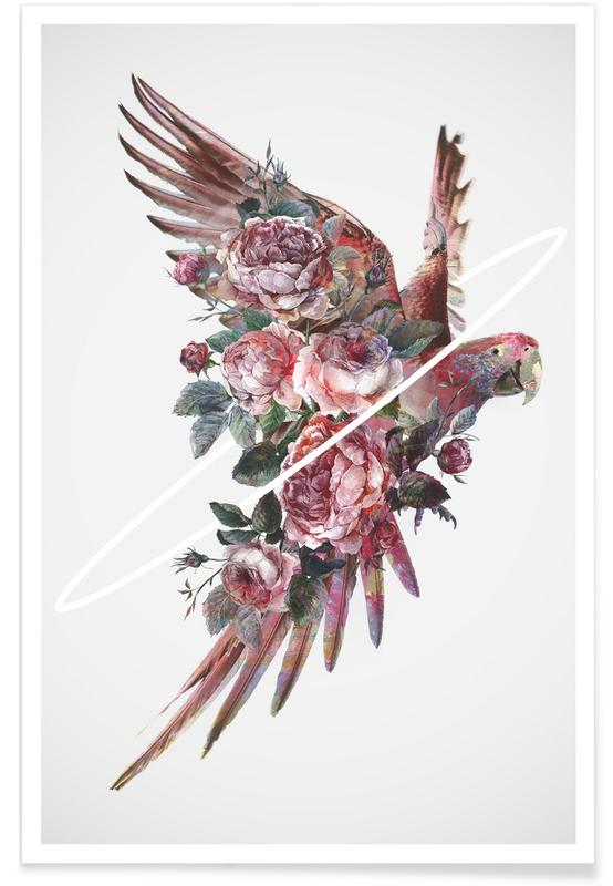 Perroquets, Fly Away affiche